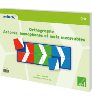 Orthographe CM1 - Accords, homophones et mots invariables