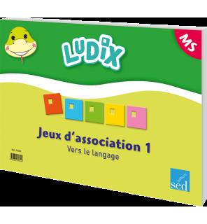 Ludix - Jeux d'association 1 Vers le langage MS